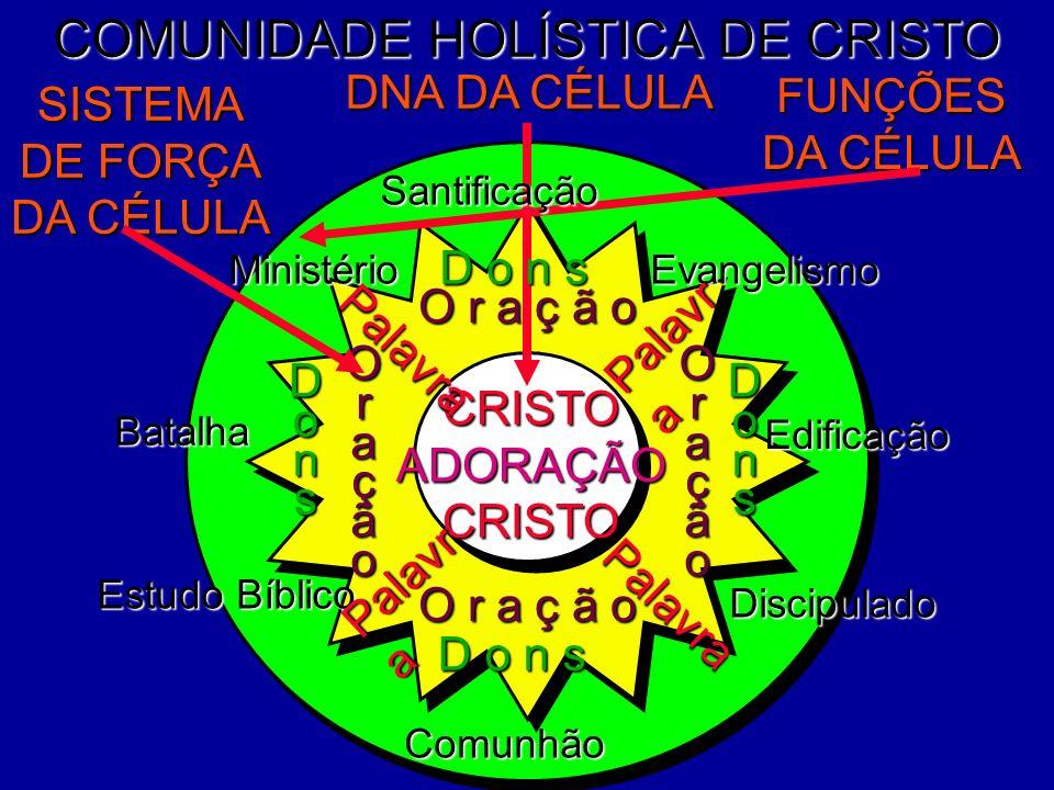 COMUNIDADE HOLÍSTICA DE CRISTO Batalha Edificação Discipulado Estudo Bíblico DNA DA CÉLULA FUNÇÕES DA CÉLULA SISTEMA DE FORÇA DA CÉLULA Evangelismo CR