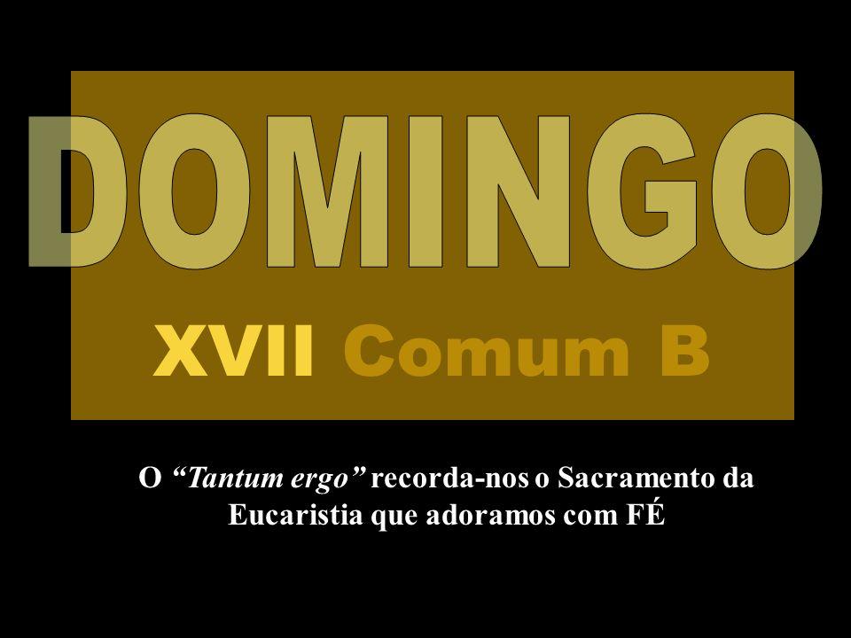 O Tantum ergo recorda-nos o Sacramento da Eucaristia que adoramos com FÉ XVII Comum B
