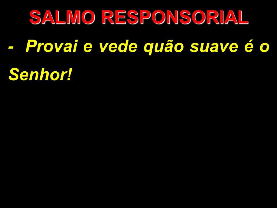 SALMO RESPONSORIAL - Provai e vede quão suave é o Senhor!
