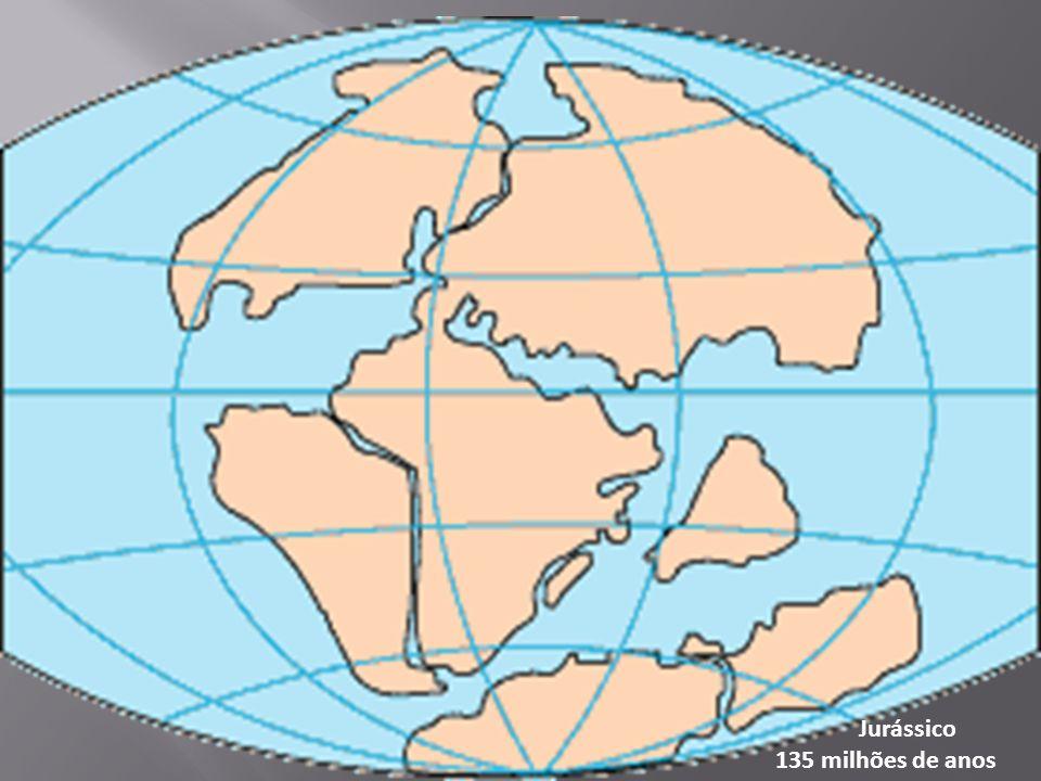 Jurássico 135 milhões de anos