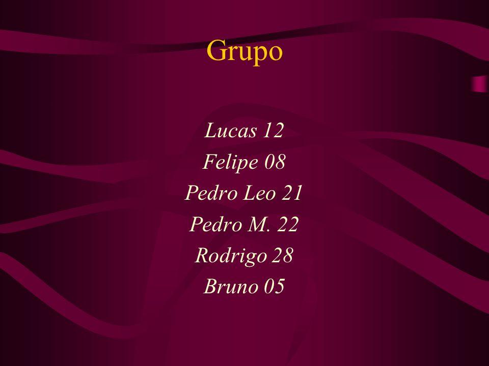 Grupo Lucas 12 Felipe 08 Pedro Leo 21 Pedro M. 22 Rodrigo 28 Bruno 05
