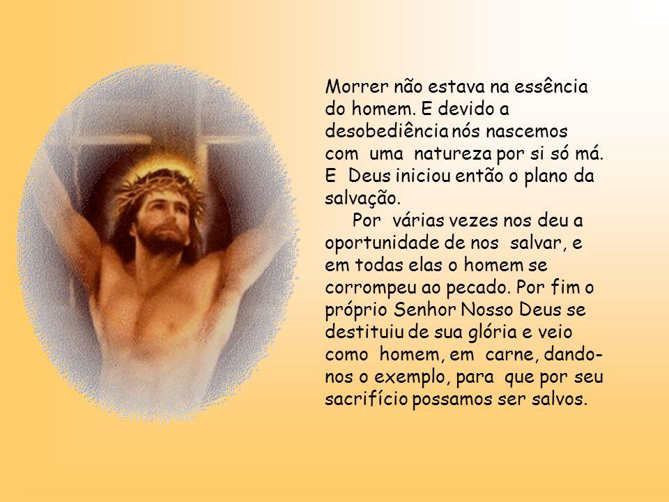 Quando Adão tomou do fruto e o comeu, o homem conheceu a morte. De fato, Deus não criou o homem para morrer. E quem não pode notar que o homem não sab