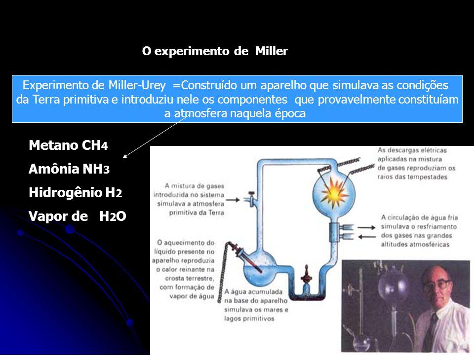 Em 1953, Stanley Miller Colocou num balão de vidro: metano, amônia, hidrogênio e vapor de água. Submeteu-os a aquecimento prolongado. Uma centelha elé