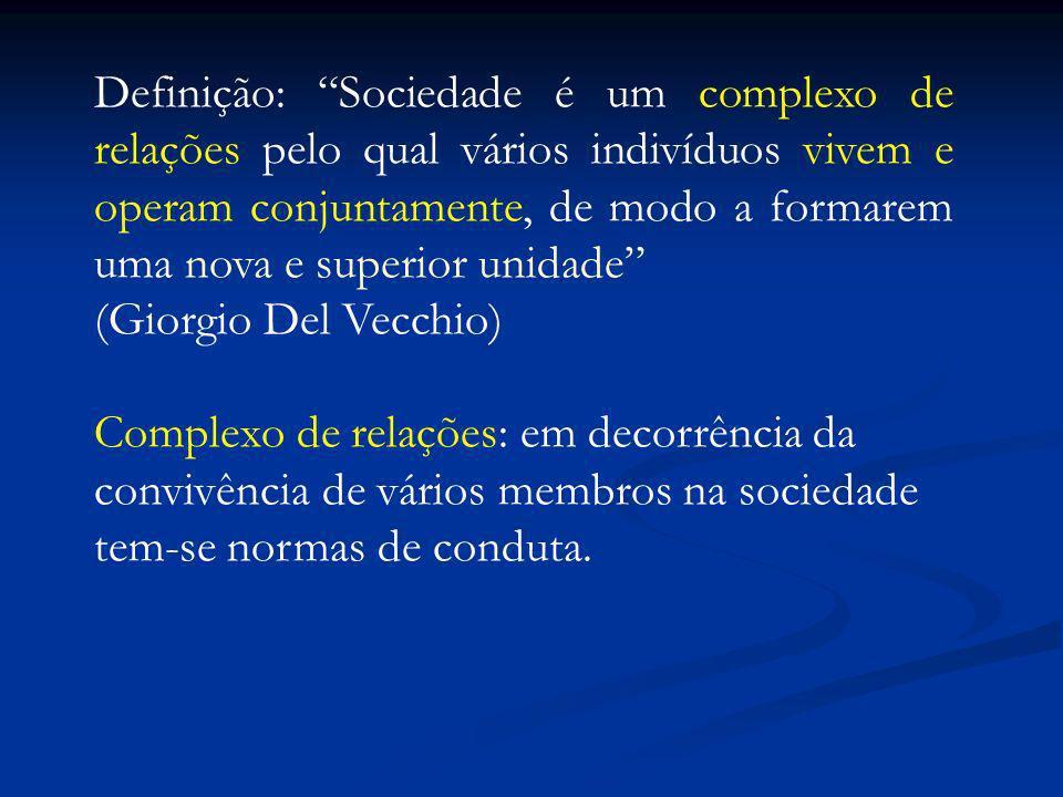 Definição: Sociedade é um complexo de relações pelo qual vários indivíduos vivem e operam conjuntamente, de modo a formarem uma nova e superior unidad