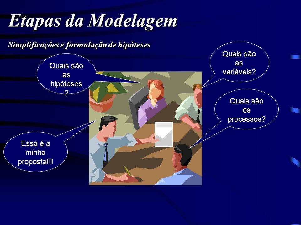 Etapas da Modelagem Quais são as variáveis? Quais são as hipóteses ? Quais são os processos? Essa é a minha proposta!!! Simplificações e formulação de