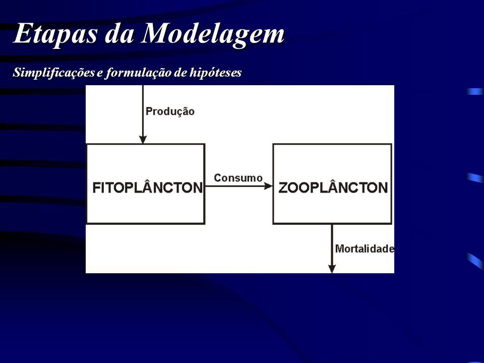 Etapas da Modelagem Simplificações e formulação de hipóteses