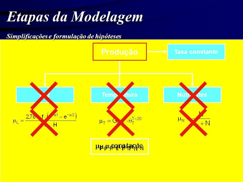 Etapas da Modelagem Simplificações e formulação de hipóteses Produção LuzTemperaturaNutrientes Taxa constante