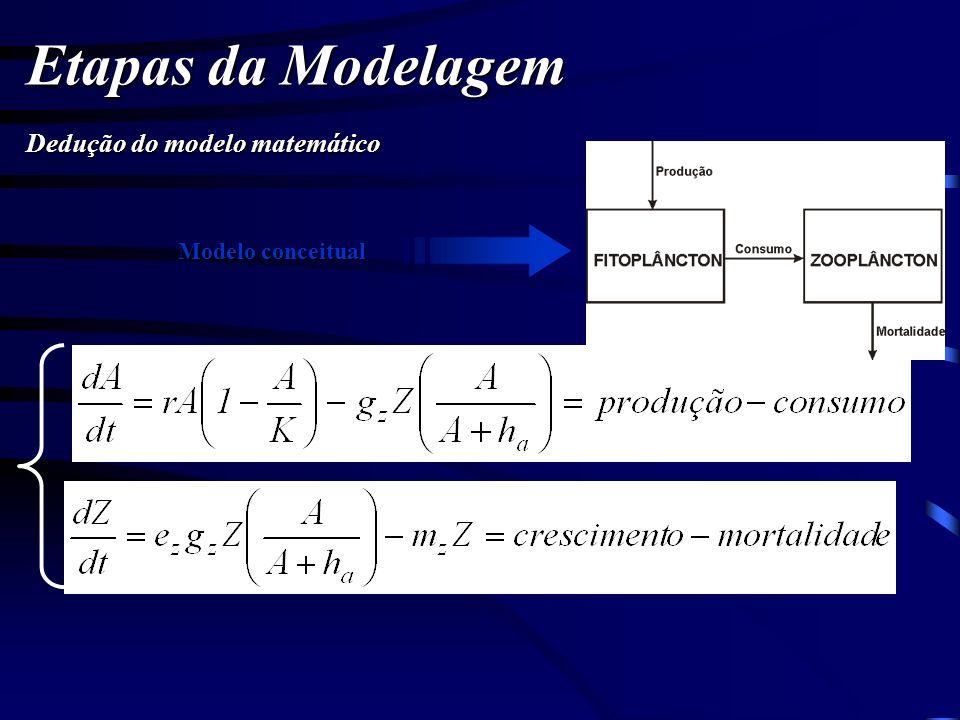 Etapas da Modelagem Dedução do modelo matemático Modelo conceitual