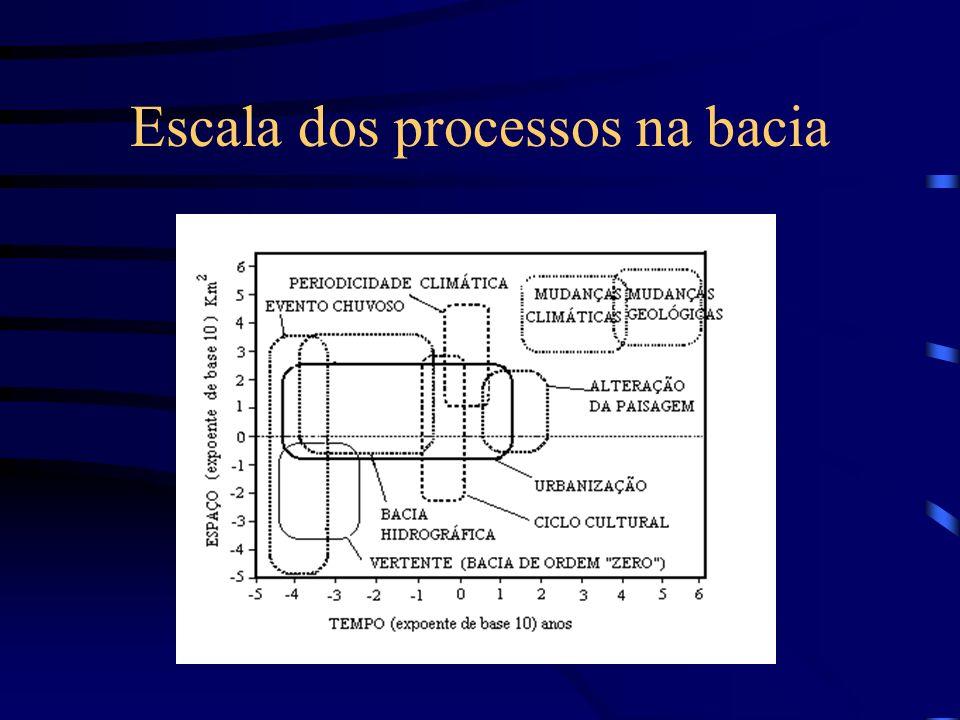 Escala dos processos na bacia