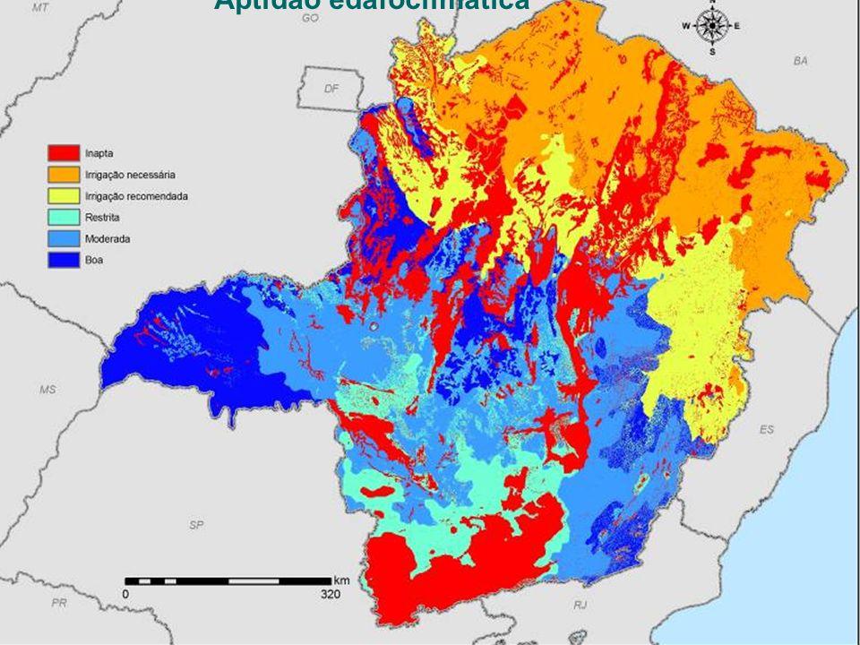 SEMAD – Secretaria de Estado de Meio Ambiente e Desenvolvimento Sustentável Zoneamento Ecológico-Econômico de Minas Gerais Cana-de-açúcar Aptidão edaf