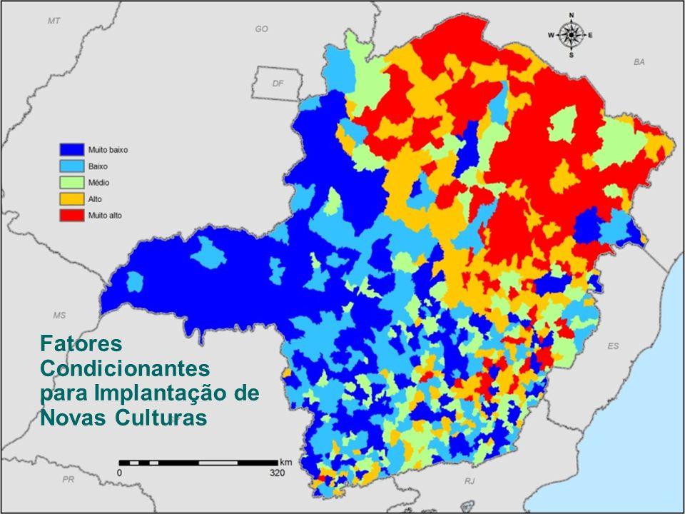 SEMAD – Secretaria de Estado de Meio Ambiente e Desenvolvimento Sustentável Zoneamento Ecológico-Econômico de Minas Gerais Cana-de-açúcar Fatores Cond