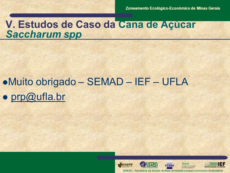 SEMAD – Secretaria de Estado de Meio Ambiente e Desenvolvimento Sustentável Zoneamento Ecológico-Econômico de Minas Gerais V. Estudos de Caso da Cana
