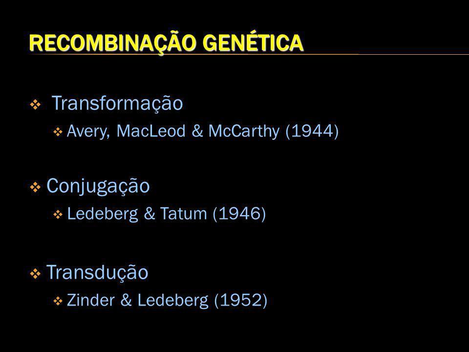 RECOMBINAÇÃO GENÉTICA Transformação Avery, MacLeod & McCarthy (1944) Conjugação Ledeberg & Tatum (1946) Transdução Zinder & Ledeberg (1952)