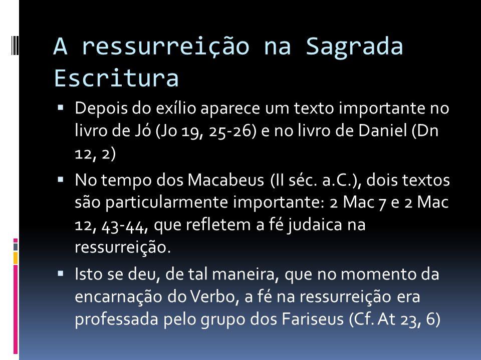 A ressurreição na Sagrada Escritura Depois do exílio aparece um texto importante no livro de Jó (Jo 19, 25-26) e no livro de Daniel (Dn 12, 2) No temp