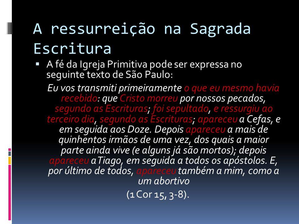 A ressurreição na Sagrada Escritura A fé da Igreja Primitiva pode ser expressa no seguinte texto de São Paulo: Eu vos transmiti primeiramente o que eu