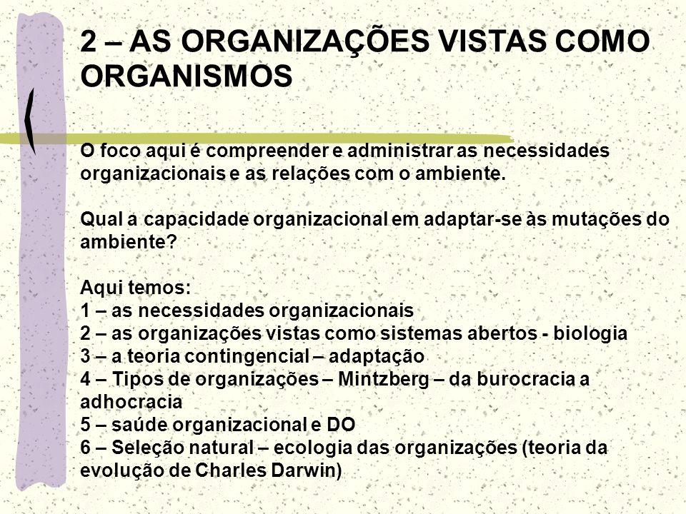 LIMITAÇÕES DA METÁFORA 1 – criar formas organizacionais que tenham grande dificuldade em se adaptar a circunstâncias de mudanças 2 – desembocar num ti