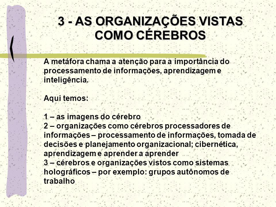 LIMITAÇÕES DA METÁFORA 1 – se é levado a ver as organizações e seus ambientes de maneira muito distante do concreto 2 – permanece na suposição da unid