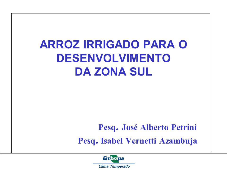 ARROZ IRRIGADO PARA O DESENVOLVIMENTO DA ZONA SUL Pesq. José Alberto Petrini Pesq. Isabel Vernetti Azambuja