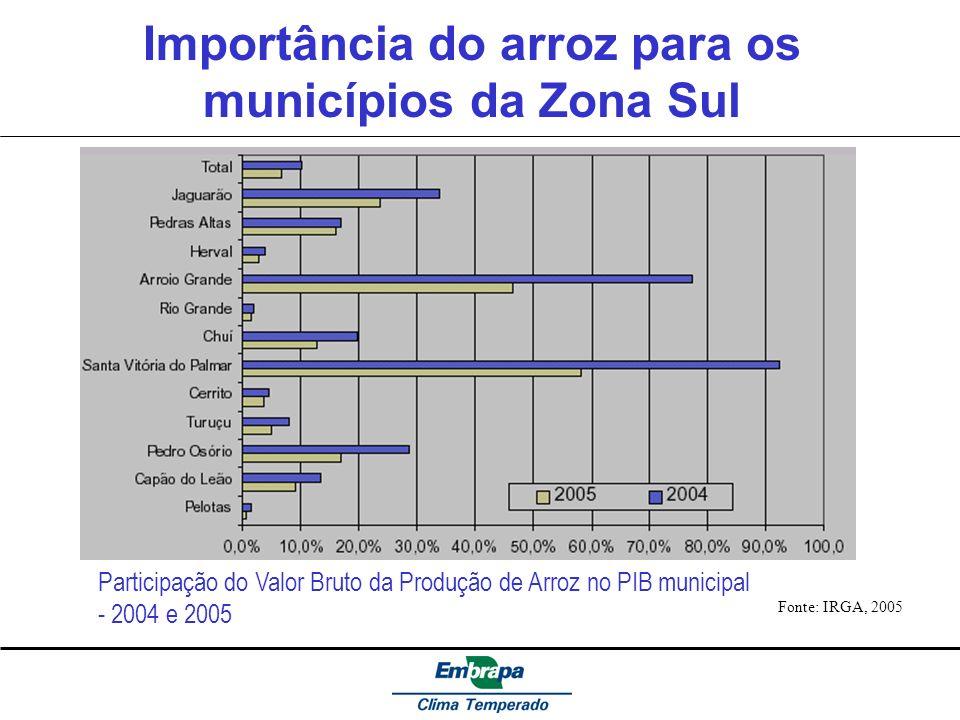 Importância do arroz para os municípios da Zona Sul Fonte: IRGA, 2005 Participação do Valor Bruto da Produção de Arroz no PIB municipal - 2004 e 2005