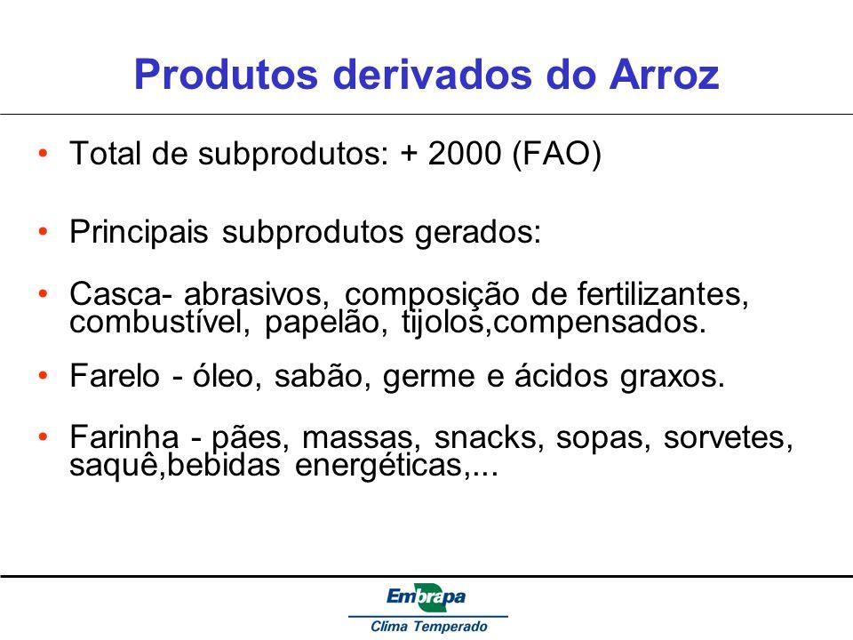 Produtos derivados do Arroz Total de subprodutos: + 2000 (FAO) Principais subprodutos gerados: Casca- abrasivos, composição de fertilizantes, combustí