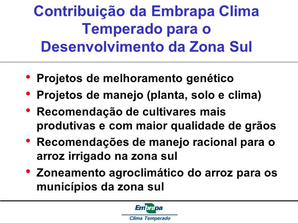 Contribuição da Embrapa Clima Temperado para o Desenvolvimento da Zona Sul Projetos de melhoramento genético Projetos de manejo (planta, solo e clima)