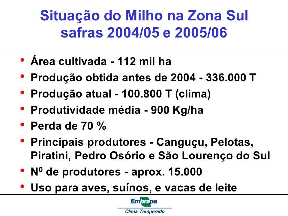 Situação do Milho na Zona Sul safras 2004/05 e 2005/06 Área cultivada - 112 mil ha Produção obtida antes de 2004 - 336.000 T Produção atual - 100.800