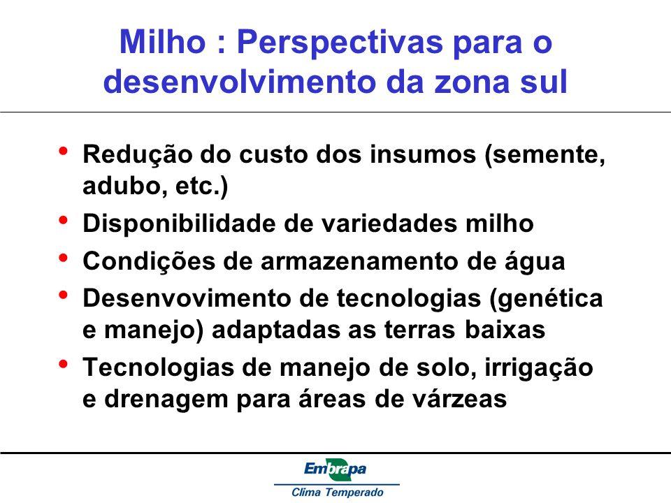 Milho : Perspectivas para o desenvolvimento da zona sul Redução do custo dos insumos (semente, adubo, etc.) Disponibilidade de variedades milho Condiç