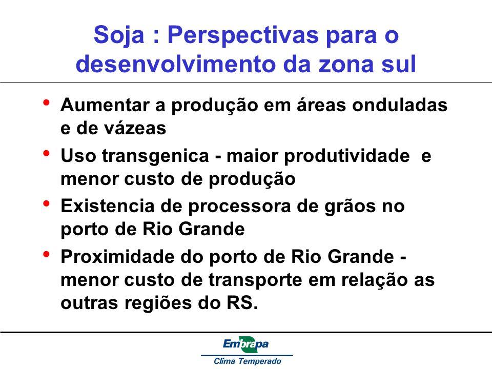 Soja : Perspectivas para o desenvolvimento da zona sul Aumentar a produção em áreas onduladas e de vázeas Uso transgenica - maior produtividade e meno