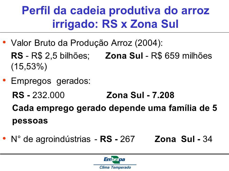 Perfil da cadeia produtiva do arroz irrigado: RS x Zona Sul Valor Bruto da Produção Arroz (2004): RS - R$ 2,5 bilhões; Zona Sul - R$ 659 milhões (15,5