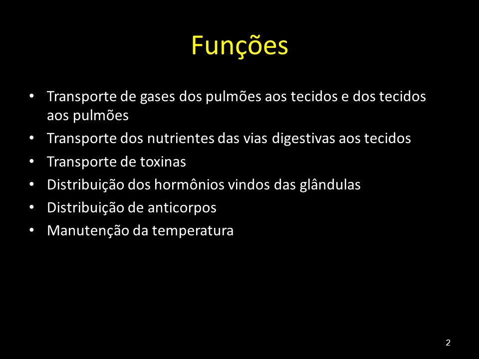 Funções Transporte de gases dos pulmões aos tecidos e dos tecidos aos pulmões Transporte dos nutrientes das vias digestivas aos tecidos Transporte de