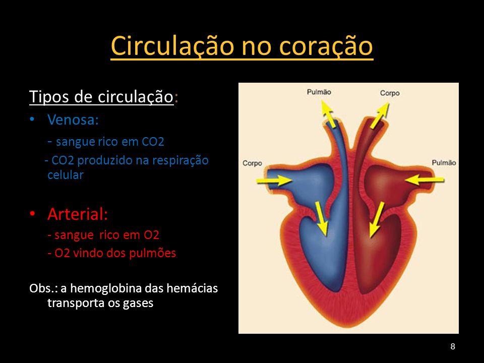 Circulação no coração Tipos de circulação: Venosa: - sangue rico em CO2 - CO2 produzido na respiração celular Arterial: - sangue rico em O2 - O2 vindo