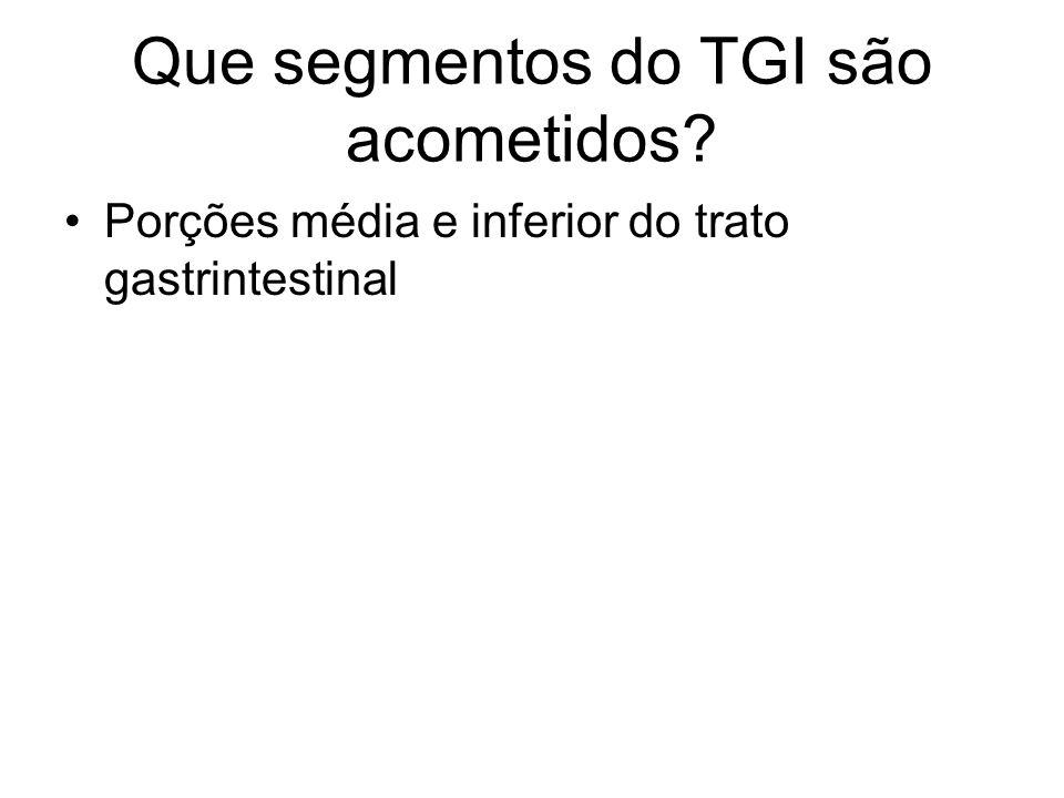 Que segmentos do TGI são acometidos? Porções média e inferior do trato gastrintestinal