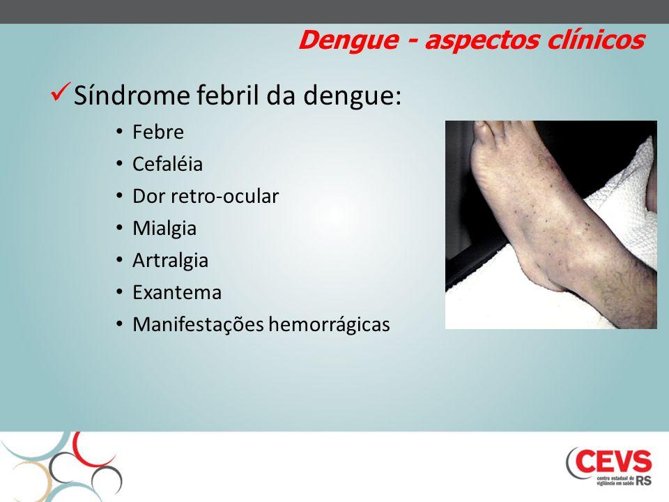 Dengue - aspectos clínicos Síndrome febril da dengue: Febre Cefaléia Dor retro-ocular Mialgia Artralgia Exantema Manifestações hemorrágicas