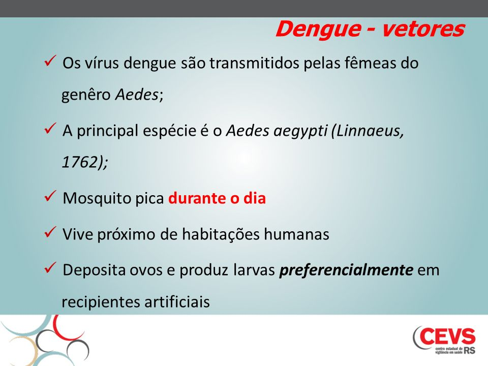 Dengue - vetores Os vírus dengue são transmitidos pelas fêmeas do genêro Aedes; A principal espécie é o Aedes aegypti (Linnaeus, 1762); Mosquito pica