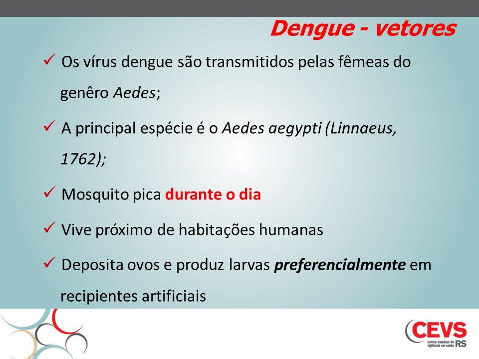 Aedes aegypti Fonte: CDC