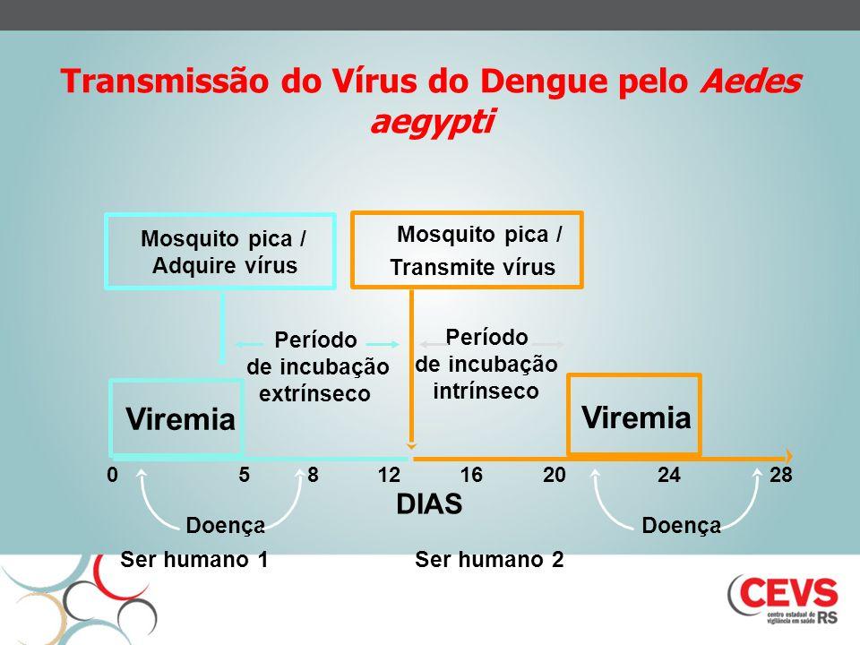 Dengue - aspectos clínicos Incubação: 3 a 14 dias; normalmente 4-7 dias; Amplo espectro clínico: doença sistêmica e dinâmica SUB CLÍNICA Febre Dengue Clássico FHD
