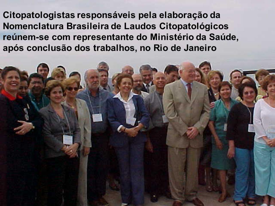 Citopatologistas responsáveis pela elaboração da Nomenclatura Brasileira de Laudos Citopatológicos reúnem-se com representante do Ministério da Saúde,
