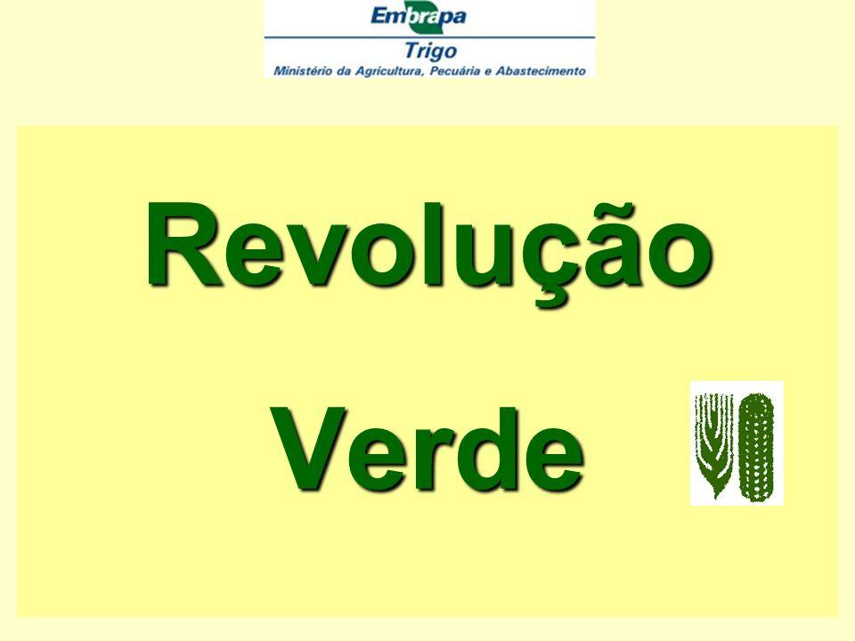 a)Agricultura Sustentável Agricultura sustentável Rentabilidade Exeqüibilidade Preservação ambiental Preservação da comunidade rural a)Agricultura Sustentável Em outras palavras – Agricultura sustentável constitui-se em sistema produtivo que considera simultaneamente: Rentabilidade Exeqüibilidade Preservação ambiental Preservação da comunidade rural