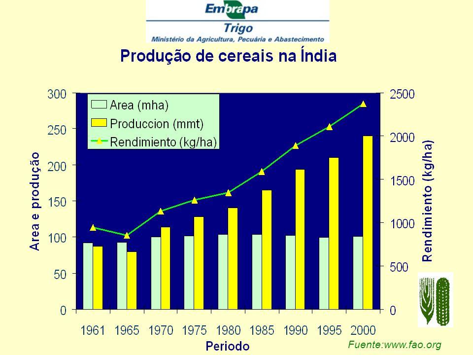 Fuente: www.fao.org