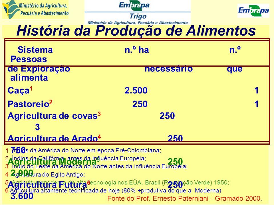 Incremento necessário na produção de cereais Crescimento da produção estimada + 1,5% por ano Crescimento de produção necessária + 2,4% por ano Produção necessária Produção estimada