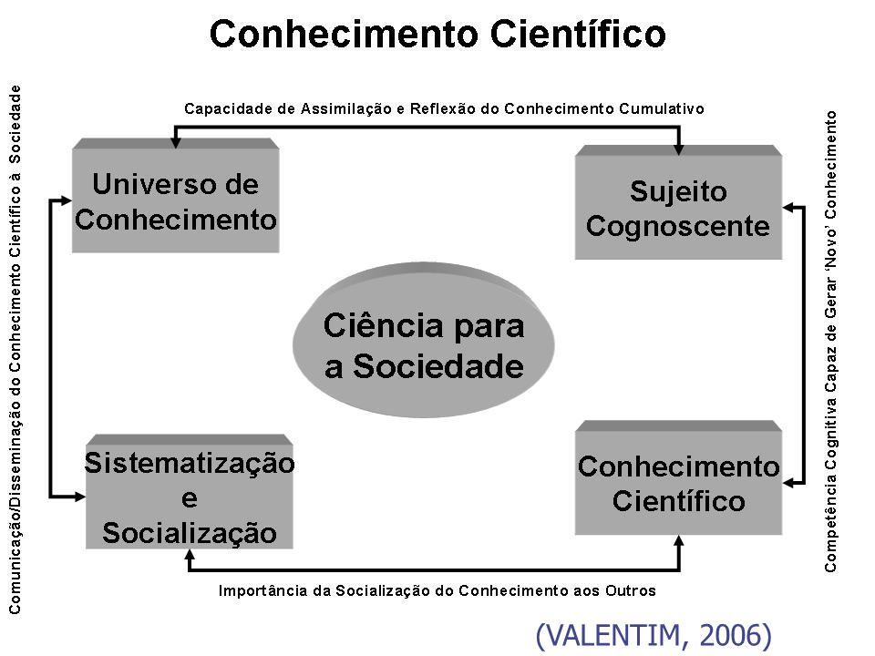 Profa. Dra. Marta Valentim (VALENTIM, 2006)