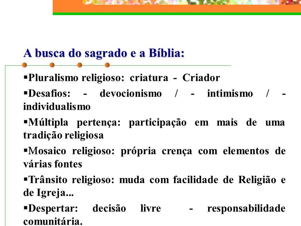 A busca do sagrado e a Bíblia: Pluralismo religioso: criatura - Criador Desafios: - devocionismo / - intimismo / - individualismo Múltipla pertença: p
