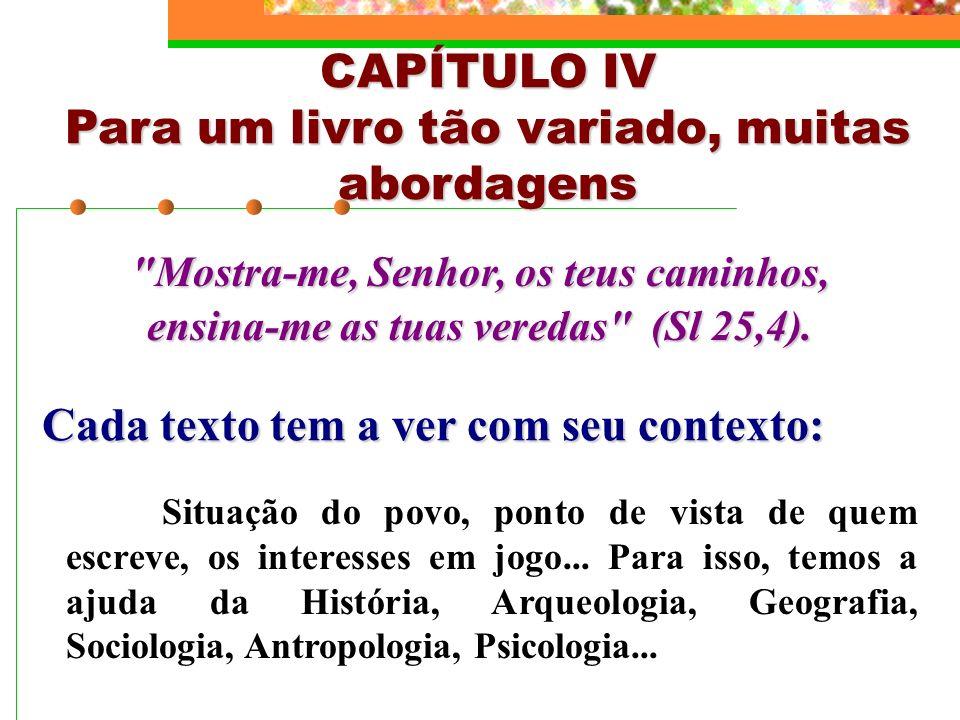 CAPÍTULO IV Para um livro tão variado, muitas abordagens
