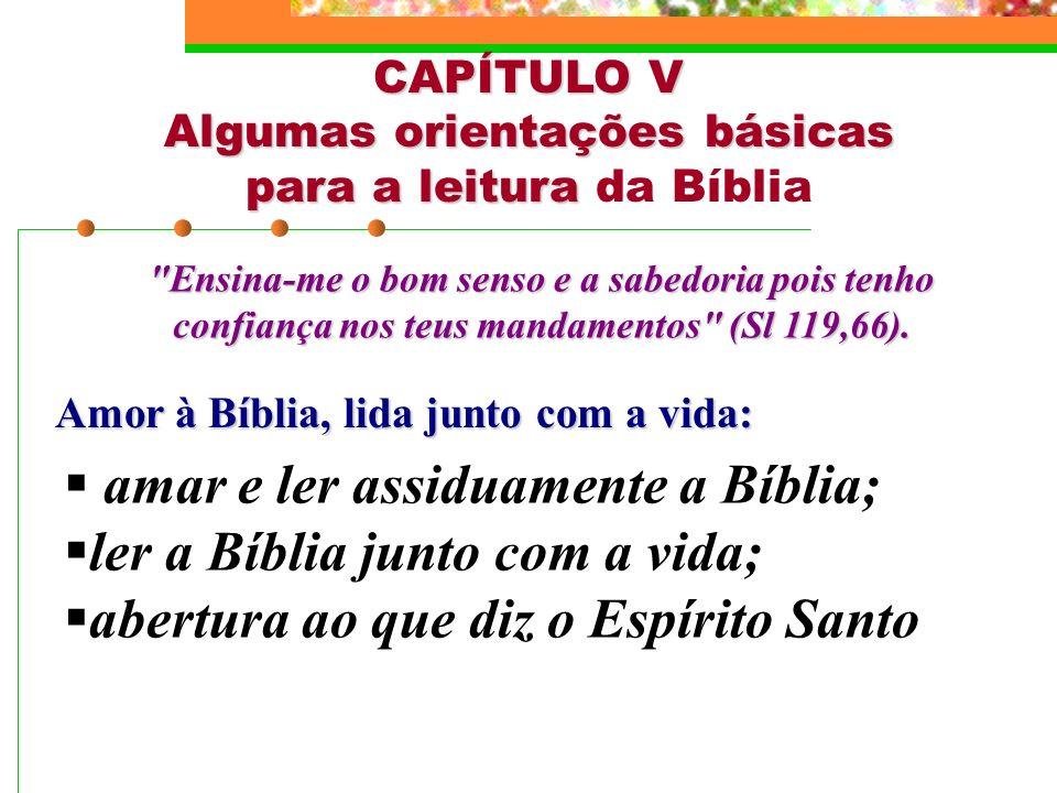 CAPÍTULO V Algumas orientações básicas para a leitura Algumas orientações básicas para a leitura da Bíblia