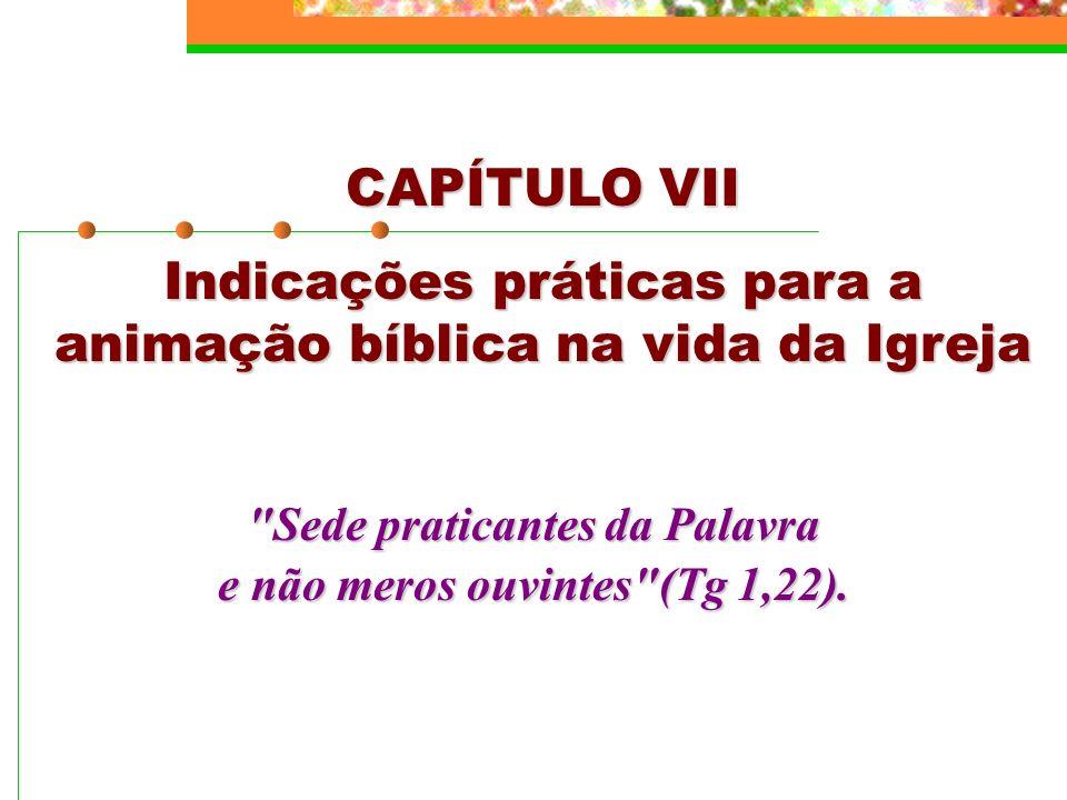 CAPÍTULO VII Indicações práticas para a animação bíblica na vida da Igreja
