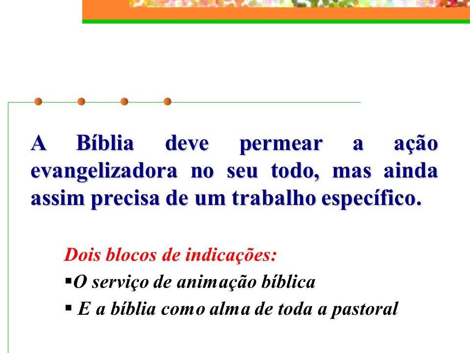 A Bíblia deve permear a ação evangelizadora no seu todo, mas ainda assim precisa de um trabalho específico. Dois blocos de indicações: O serviço de an