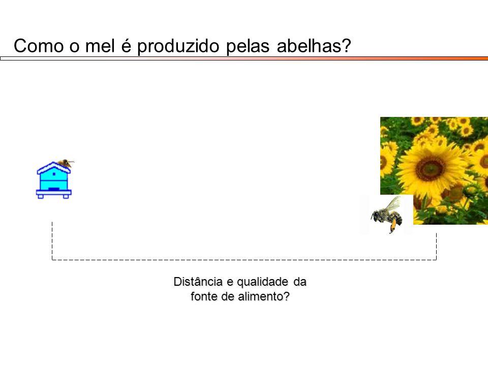 Como o mel é produzido pelas abelhas? Distância e qualidade da fonte de alimento?