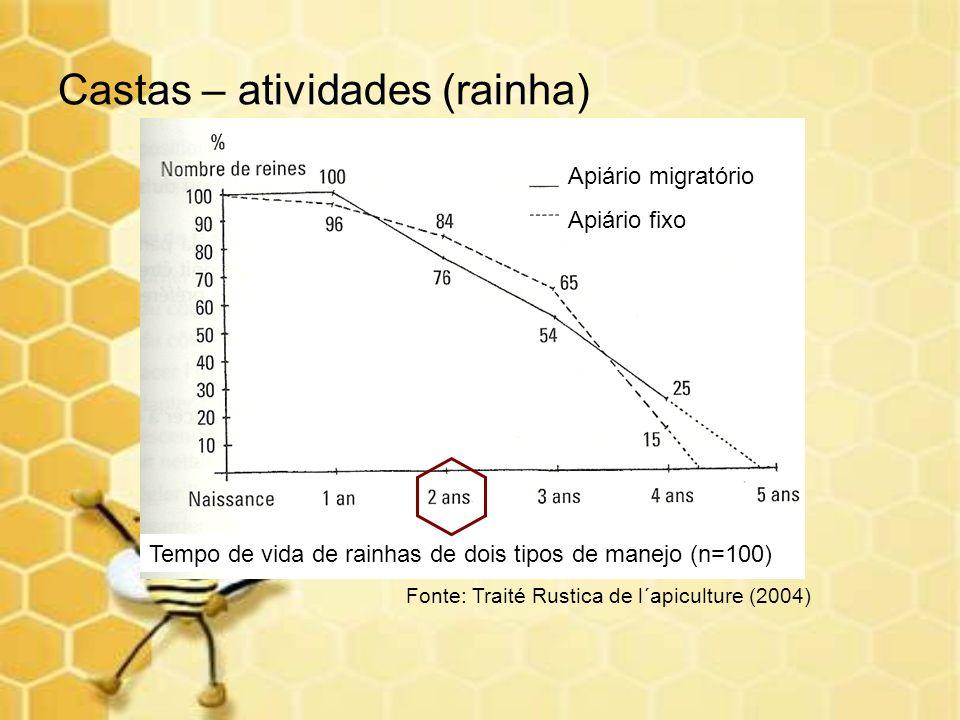 Castas – atividades (rainha) Tempo de vida de rainhas de dois tipos de manejo (n=100) Apiário migratório Apiário fixo Fonte: Traité Rustica de l´apicu