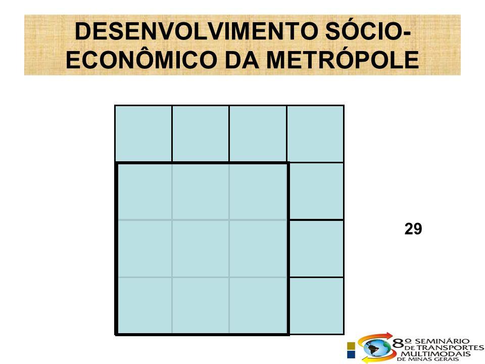 DESENVOLVIMENTO SÓCIO- ECONÔMICO DA METRÓPOLE 29