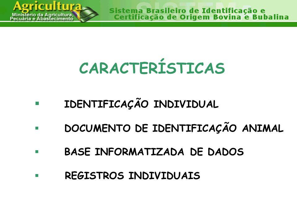 CARACTERÍSTICAS IDENTIFICAÇÃO INDIVIDUAL DOCUMENTO DE IDENTIFICAÇÃO ANIMAL BASE INFORMATIZADA DE DADOS REGISTROS INDIVIDUAIS